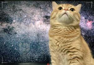 河野太郎 背景 宇宙